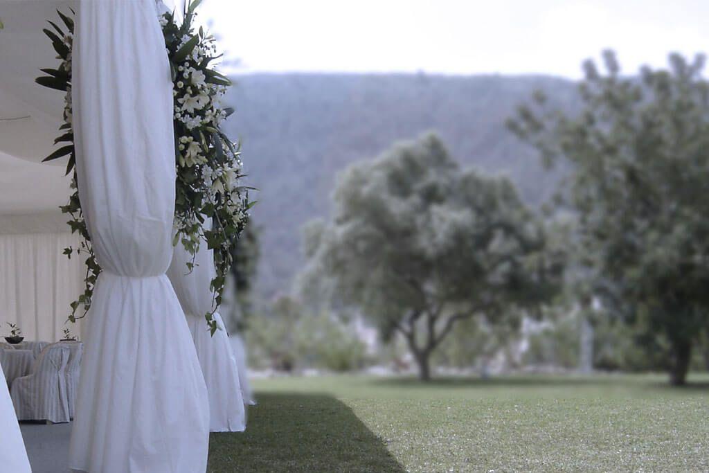 carpa para boda en jave